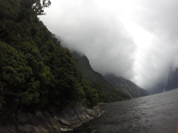 Milford Sounds